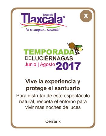 Santuario de las luci rnagas en tlaxcala temporada 2017 for Espectaculo de luciernagas en tlaxcala